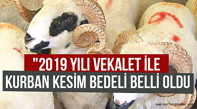 2019 Yılı Kurban Kesim Bedeli Belli oldu.