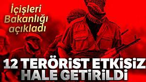 İçişleri Bakanlığı: '12 terörist etkisiz hale getirildi'