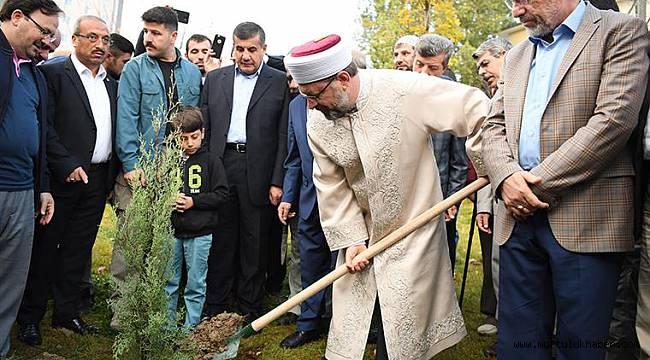 Başkan Erbaş,fidan dikme etkinliğine katıldı