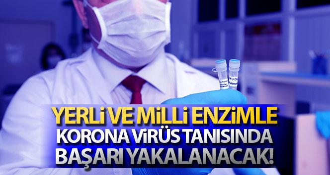 Yerli ve milli enzimle, Korona virüs tanısında başarı yakalanacak