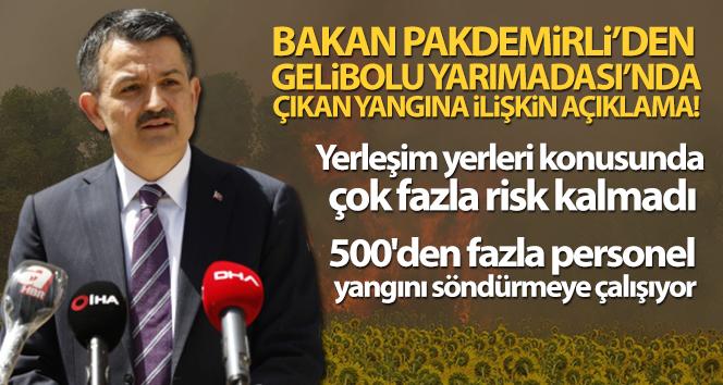 Bakan Pakdemirli: 'Yerleşim yerleri konusunda çok fazla risk kalmadı'