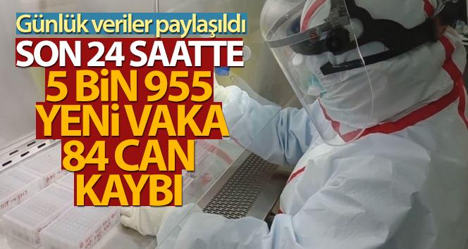 Türkiye'de son 24 saatte 5.955 koronavirüs vakası tespit edildi